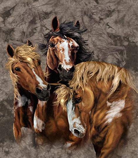 Лошади (9) :: картина-загадка :: Стивен Гарднер